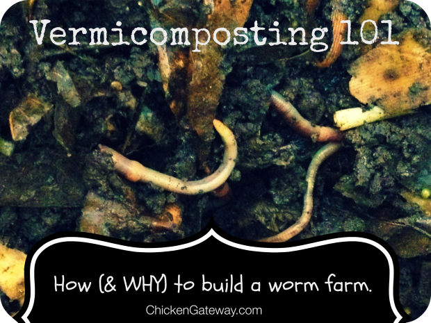 ChickenGateway.com | Vermicomposting 101:  How (&WHY) to build a worm farm
