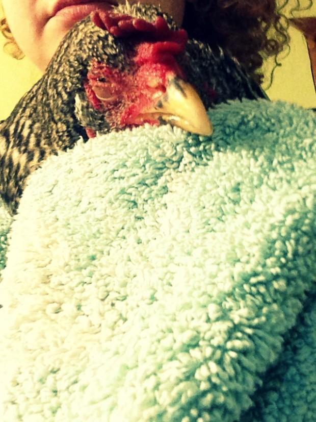 Sick-Chick-4