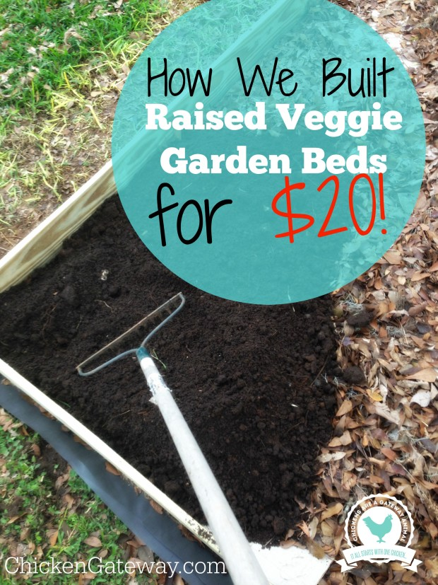 do you plan directly into the ground or are you using raised beds too