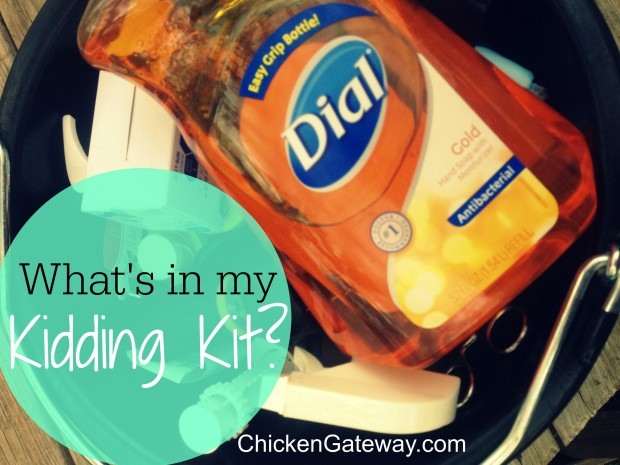 What's in my goat kidding kit - ChickenGateway.com
