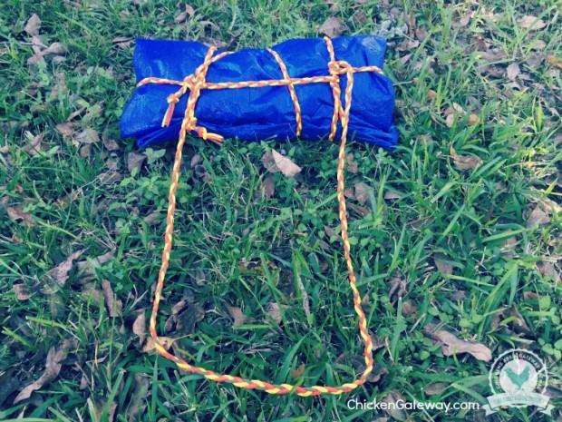 5lb Survival Kit Challenge   ChickenGateway.com