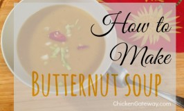 Recipe:  Butternut Soup